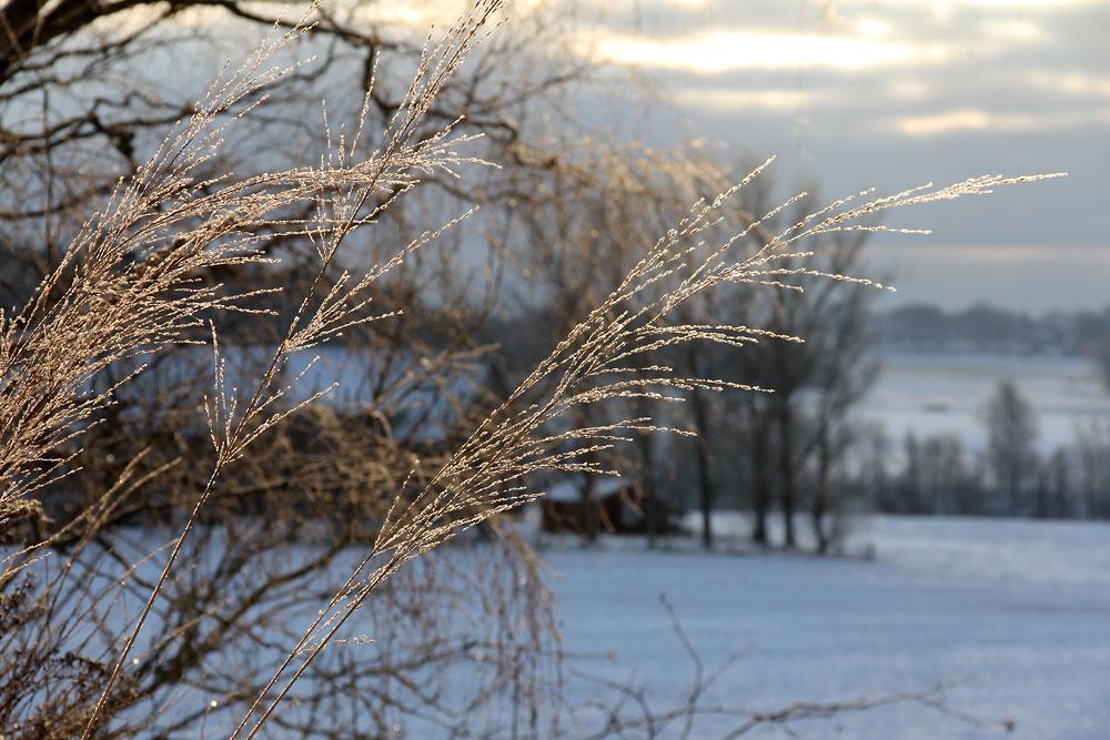 arstider-vinter