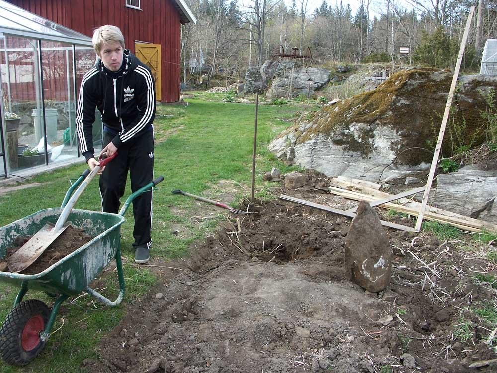 David-grundar-Norge-100503